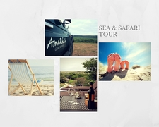 Sea & Safari Tour
