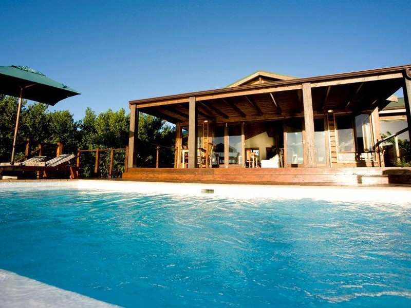 Garden Route Knysna Accommodation The Elephant Hide Guest Lodge Accommodation Facilities Pool