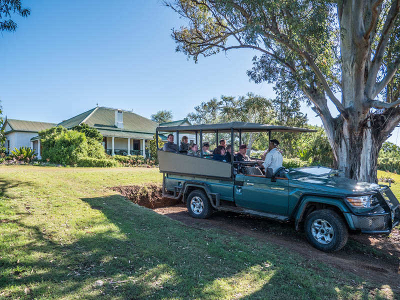 Amakhala Game Reserve Leeuwenbosch Country House Safari