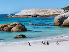 Cape & Safari Tours Accommodation Cape Town Sea