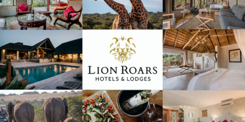 Lion Roars Packages & Tours