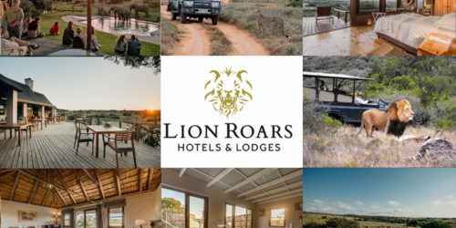 Lion Roars Packages & Tours  Hlosi