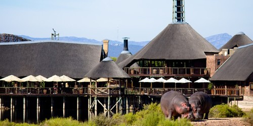 Buffelsdrift Game Lodge Accommodation In Oudtshoorn Lodge  Banner