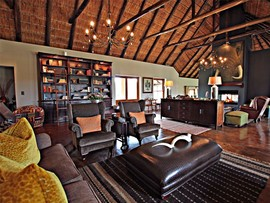 Addo Eastern Cape Safari Accommodation Hlosi Game Lodge Guest Lounge 1