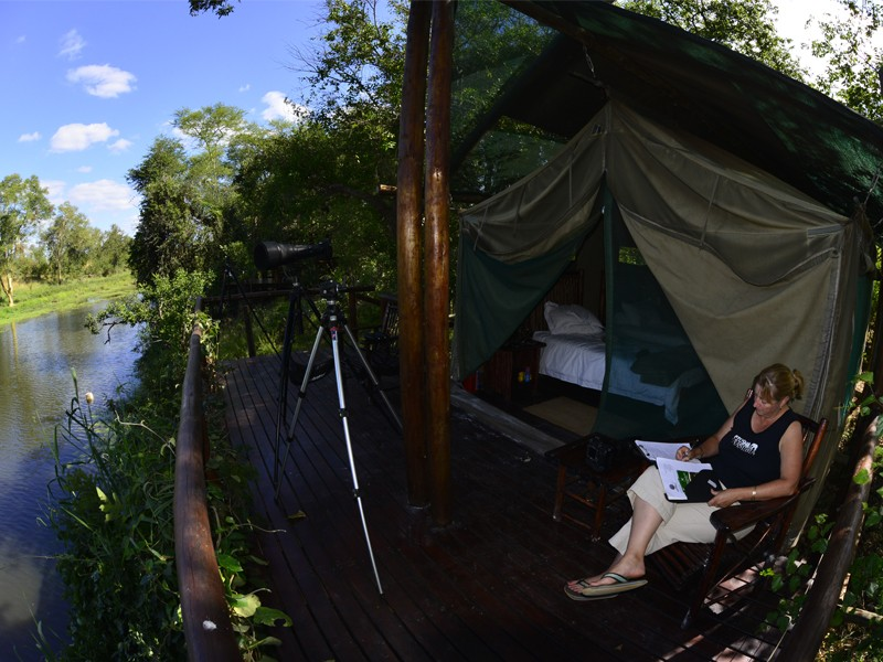Mozambique Accommodation Great Limpopo National Park Machampane Wilderness Camp Tent Deck