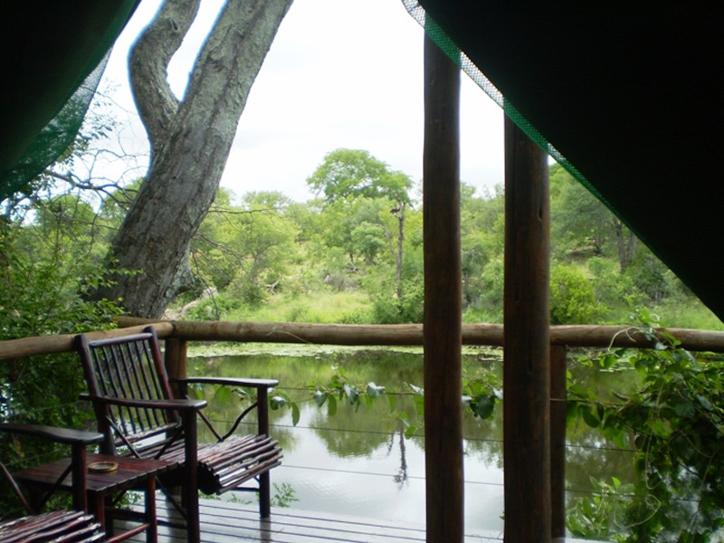 Mozambique Accommodation Great Limpopo National Park Machampane Wilderness Camp Tent View2