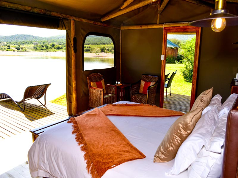 Cape Hotels The Unique A&E Portfolio Buffelsdrift Game Lodge Oudtshoorn Waterfront Tent View