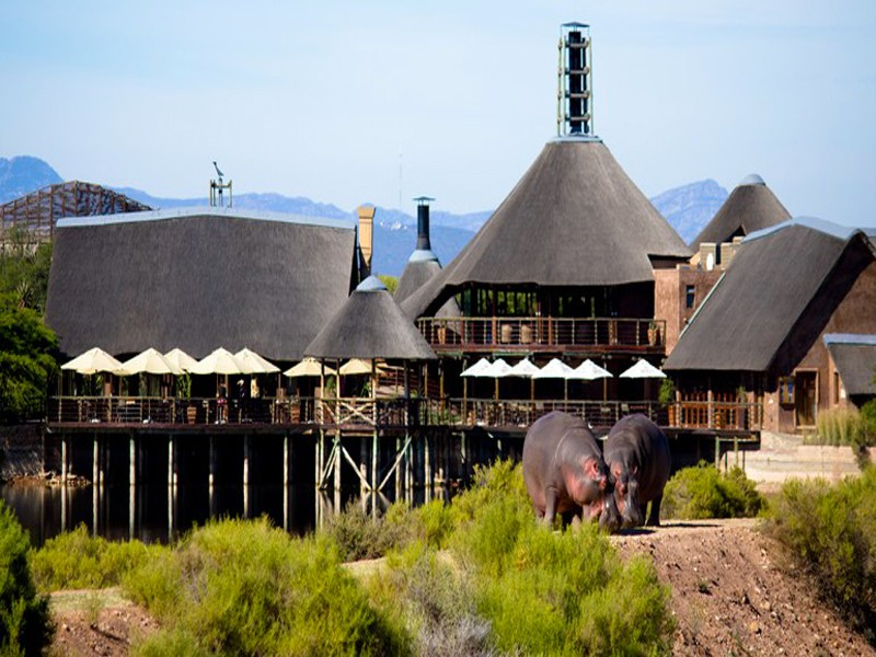 Buffelsdrift Game Lodge Accommodation In Oudtshoorn Lodge
