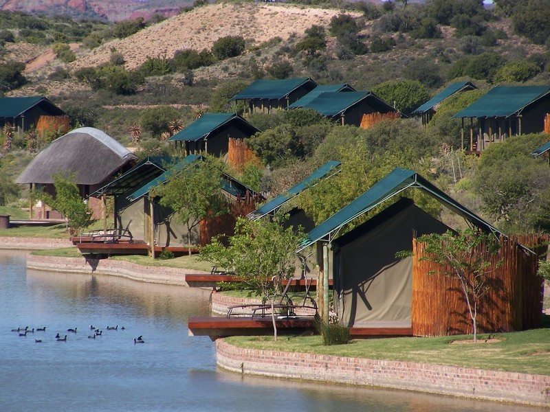 Buffelsdrift Game Lodge Accommodation In Oudtshoorn Tented
