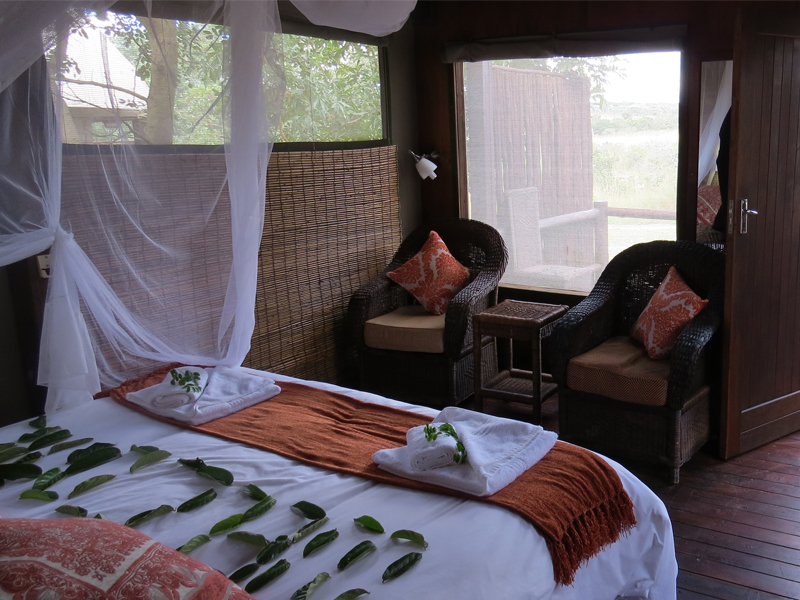 Nkambeni Safari Camp Kruger National Park Tented Bedroom View