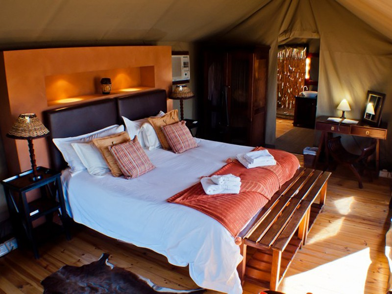 Buffelsdrift Game Lodge Accommodation In Oudtshoorn Inside Room L