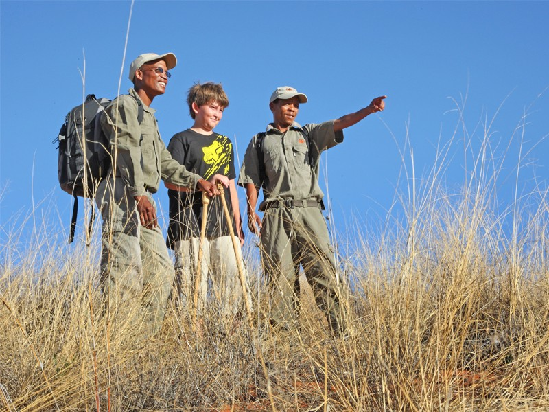 Kgalagadi Accommodation Transfrontier Park ! Xaus Lodge Activities