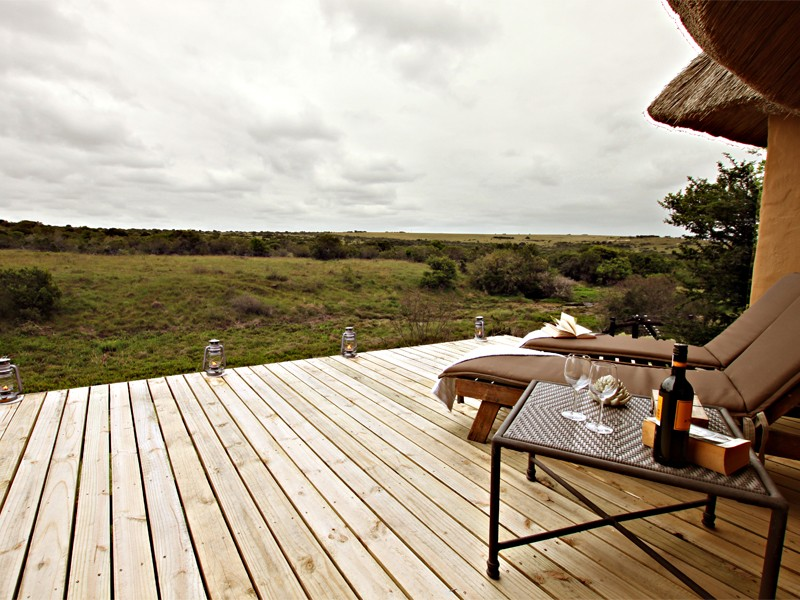 Addo Eastern Cape Safari Accommodation Hlosi Game Lodge Luxury Suite Deck