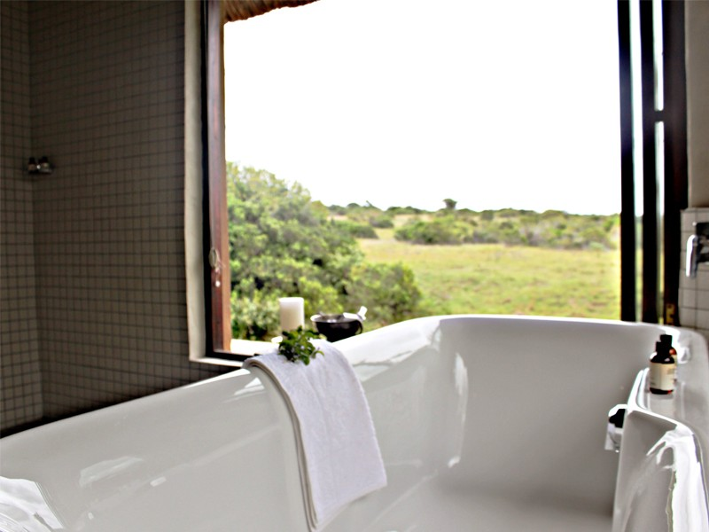 Addo Eastern Cape Safari Accommodation Hlosi Game Lodge Luxury Suite Bathroom View