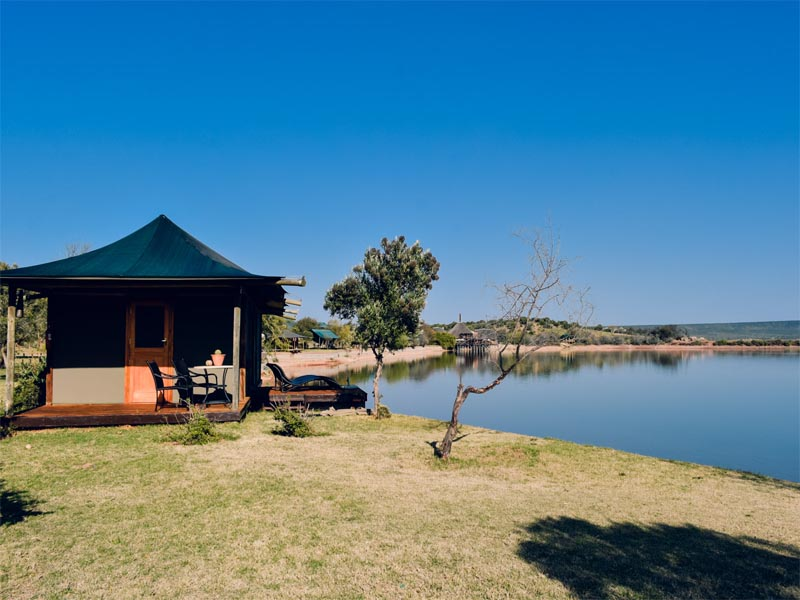 Cape Hotels The Unique A&E Portfolio Buffelsdrift Game Lodge Oudtshoorn Waterfront Tent Exterior