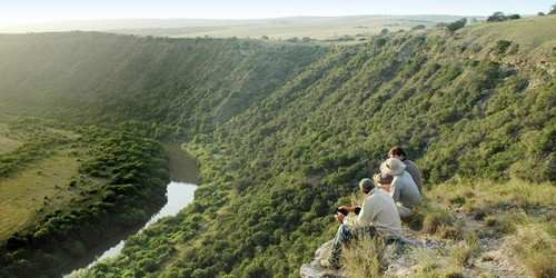 Greater Addo Port Elizabeth Accommodation Amakhala Game Reserve Safari Experience